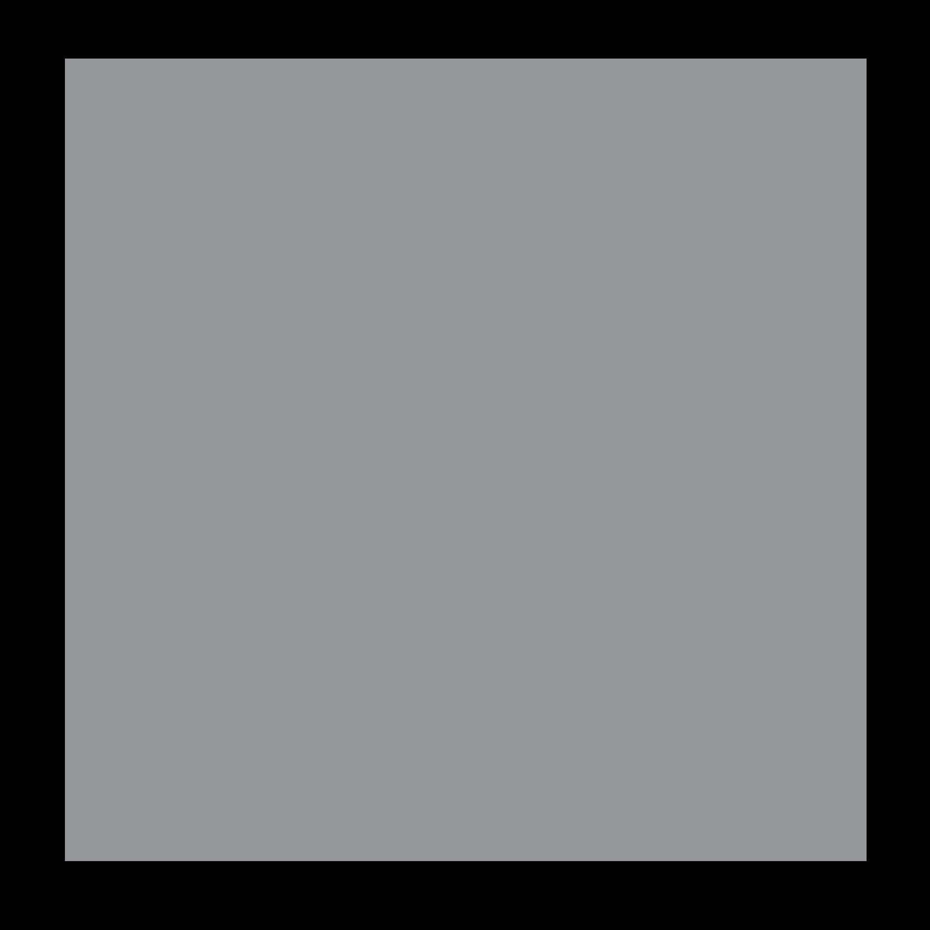 Q-Portfolio